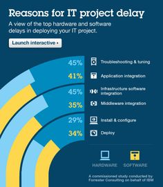 What's taking so long?  Reasons for IT project delays
