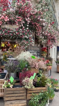 Cottage Garden Design, Garden Shop, Beautiful Flower Arrangements, Beautiful Flowers, Backyard Landscaping, Backyard Patio, House Plants Decor, Backyard Paradise, Garden Planning