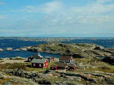 #Kosterhavets National Park #Sweden
