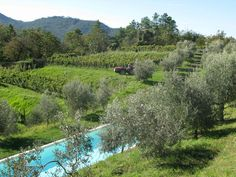 Booking.com:  Farm stay Sostio A Levante  ,  Framura,  Italy   - 271  Guest reviews  .  Book your hotel now!