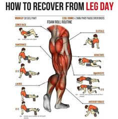 How To Recover From Leg Day! Big Strong Legs Workout