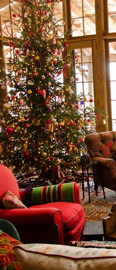 So pretty....the height and sparseness of the tree, the open windows, the comfy chair...the fabric..