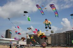 kites flying in the air - Google Search