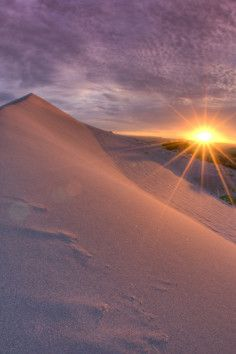 Bruneau Dunes State Park in Idaho, home of America's highest single-structured sand dune.