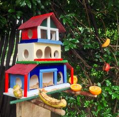 Fruit and seed bird feeder