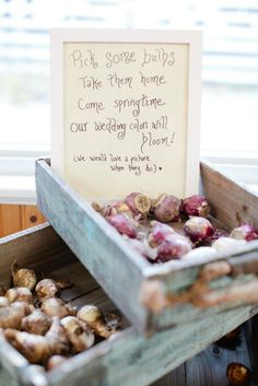 Bulbs is a natural favor option for spring nuptials. Spring #weddingfavors  #springwedding #DIY