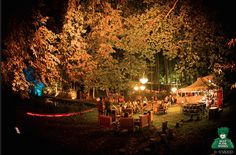 Are you an art and festival lover? Then definitely visit one of these festivals! - Deep In The Woods (Namen)