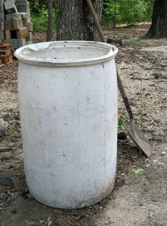 Grow potatoes in a food grade barrel!