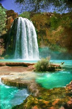 Havasu Falls is a waterfall of Havasu Creek, located in the Grand Canyon, Arizona. It is within Havasupai tribal lands. Havasu Creek is a stream in the U.S. state of Arizona associated with the Havasupai people. It is a tributary to the Colorado River, which it enters in the Grand Canyon. Havasu Falls is located 1½ miles (2.4 km) from Supai.