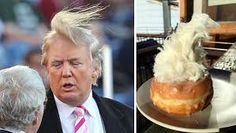 Image result for donald trump's hairstyle
