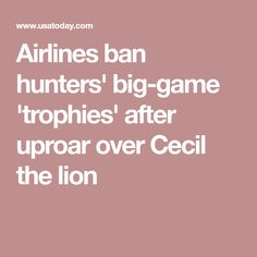 Airlines ban hunters' big-game 'trophies' after uproar over Cecil the lion