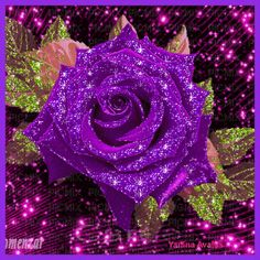 50 pieces, bouquet of blue roses up to the sea, - Flowers Gif, Glitter Flowers, Beautiful Rose Flowers, Beautiful Gif, Purple Flowers, Red Roses, Rose Images, Rose Pictures, Flower Images