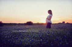 Maternity BlueBonnets - Creative Photography by Amanda