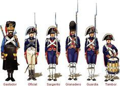 spanish walloon guard 1808