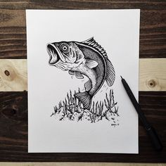 21 Awesome Outdoor Drawings By Sam Larson - 50 Campfires Fish Drawings, Pencil Drawings, Art Drawings, Sam Larson, Fish Sketch, West Art, Fish Crafts, Wood Burning Patterns, Desenho Tattoo