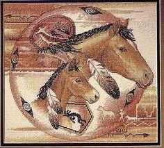 Koně indiánské