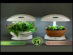 11 Best Aerogarden Tips And Tricks Images Indoor Garden 640 x 480