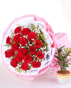 19 stems premium red roses, solidago canadensis and baby's breath surrounded. White and pink corrugated paper round package,  bowknot finished the bottom.