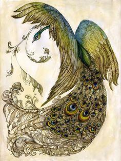 Peacock by Feanne