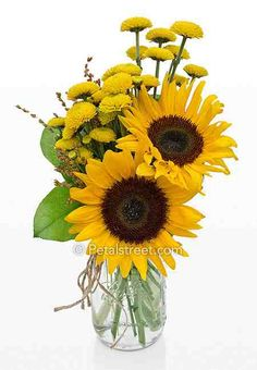 Image from http://www.petalstreet.com/images/fall-flowers/fall-arrangement-3LG.jpg.
