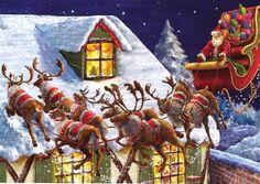 Santa fin