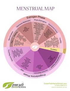 Menstrual Map: Explorations of Menstrual Health by Elaine Sheff, Clinical Herbalist - Green Path Herb School Pms, Health Tips, Health And Wellness, Women's Health, Holistic Wellness, Hormon Yoga, Period Cycle, Period Problems, Hormone Balancing