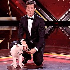 Florian David Fitz, Bae, Harry Potter, Film, People, Movies, Animals, Pets, Dogs