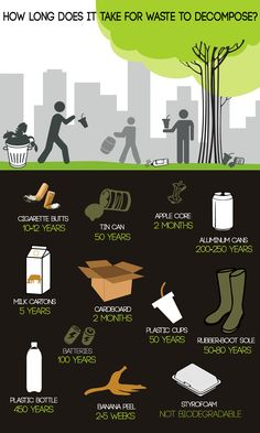 Image result for how long does it take to biodegrade