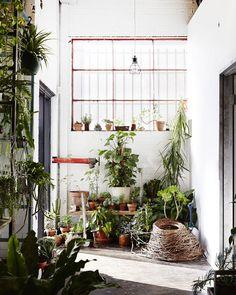 The Design Files, Re-decorated! - The Design Files Garden Deco, Tropical Home Decor, Tropical Houses, Tropical Interior, Bohemian Interior, Tropical Furniture, Tropical Bedrooms, Interior Plants, Tropical Garden