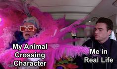 Crazy Funny Memes, Really Funny Memes, Stupid Memes, Funny Relatable Memes, Haha Funny, Funny Posts, Hilarious, Animal Crossing Memes, Wholesome Memes