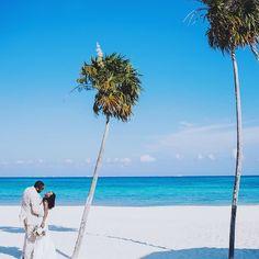 Perfect shot! #munaluchi #munaluchibride #weddingthings #inlove #destinationweddings | #Repost @lcowart When real life looks like a screen saver #brooksfest2016 #destinationwedding #mexicowedding #beachwedding #playadelcarmen #laurencowart