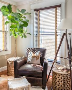 Party of one, corner window seat? Right this way. Get the look at theshadestore.com Design: Trevor Fulmer #LoveYourWindows Corner Window Seats, Back Wallpaper, Sophisticated Living Rooms, Faux Wood Blinds, Home Decor Trends, Interior Design, South Boston, Sun Photo