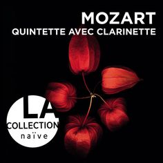 Wolfgang Amadeus Mozart : Quintette with clarinette