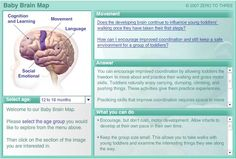Therapist Resource of the Week: Interactive Baby Brain Map on Zero to Three - Pinned by @PediaStaff – Please Visit http://ht.ly/63sNt for all our pediatric therapy pins