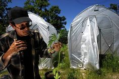 Mendocino County, California Continues to Spar with Feds over Conflicting Marijuana Laws | Weedist