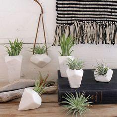 plantes épiphytes en décoration intérieure : pots suspendus au design géométrique, tapis mural au crochet et déco en bois flotté