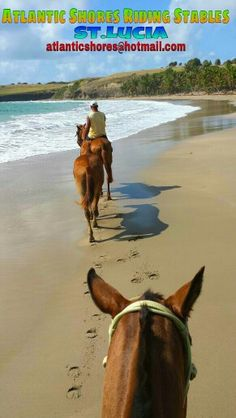 Afternoon ride with Atlantic Shores Riding Stables in St.Lucia