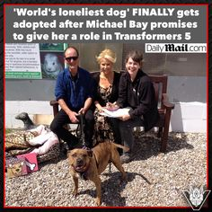 Transformers The Last Knight - Britain's Loneliest Dog Finds A Home After #TF5 Role