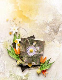 World Photo, Site Design, Digital Scrapbooking, Gallery, Artwork, Work Of Art, Website Designs, Yard Design, Design Websites