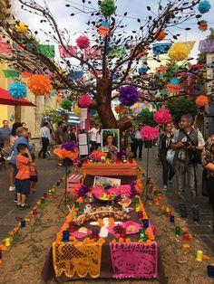 #FridaKahlo. Tradiciones mexicanas. Tlaquepaque, Jal. 2017 ||