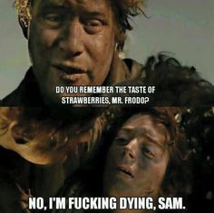 Post with 1808 votes and 106046 views. Some LOTR for u all :) Nerd Memes, Funny Memes, Lotr Legolas, Male Friendship, The Neverending Story, Harry Potter, J. R. R. Tolkien, Film Books, Meme Lord