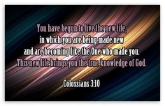 Colossians 3:10 2 Thessalonians, Colossians 3, Biblical Verses, Scriptures, Psalm 31, Bible Verses Quotes Inspirational, Daily Scripture, 1 Timothy, Fear Of The Lord