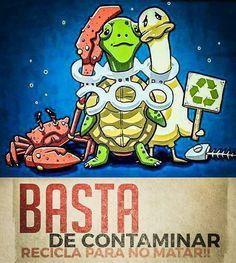 Reciclar para vivir.....