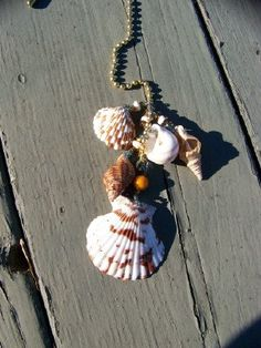 Sea Shell Ceiling Fan Pull