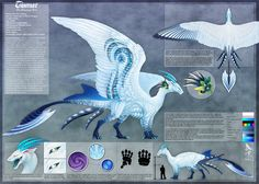 Tiamat Reference Sheet v.2 by Araless.deviantart.com on @deviantART