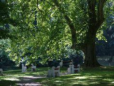 Royal garden, Hlohovec, Slovakia Royal Garden, Park, Plants, Parks, Plant, Planets