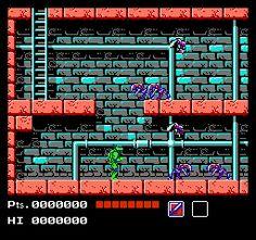 Teenage Mutant Ninja Turtles for the NES.