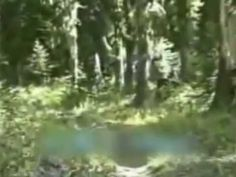 Bigfoot Caught On Tape?