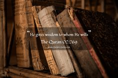 "#84 The Quran 02:269 (Surah al-Baqarah) ""He gives wisdom to whom He wills."" #Quran #quranic #quotes #verses #Allah #Religion #Islam #Muslim #inspiration #mercy #power #peace #Islamic #reminders"
