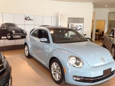 Picking up my 2014 TDI Diesel Beetle today. Here she is still in the showroom.